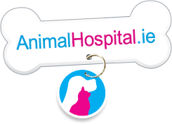The Animal Hospital Home