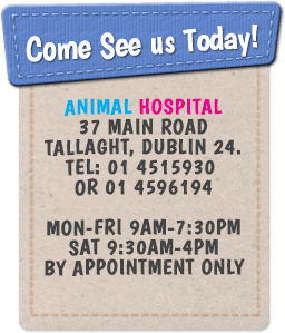 Animal Hospital 37 Main Road Tallaght, Dublin 24. Tel: 01 4515930 or 01 4596194 Mon-Fri 9am-7:30pm Sat 9:30am-4pm By Appointment Only